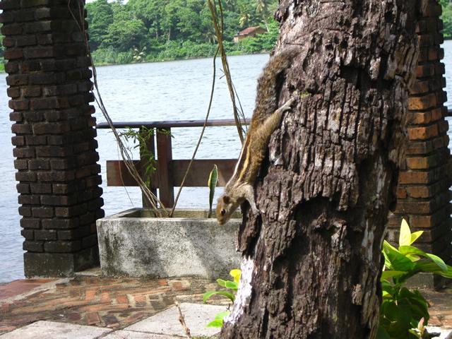 Остров Бора Бора. Купить страховку для выезда онлайн